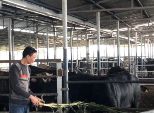 Hình thành thế hệ nông dân mới, giữ vững giá trị văn hóa tốt đẹp của dân tộc