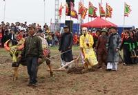 Hình tượng con trâu trong văn hóa truyền thống