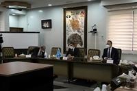 """IAEA đạt """"giải pháp tạm thời"""" với Iran"""