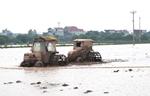 Lấy nước đợt 3 đổ ải vụ Đông Xuân khu vực Trung du và Đồng bằng Bắc Bộ