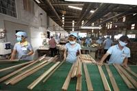 Giải pháp nào để đưa ngành gỗ Việt Nam vươn xa hơn