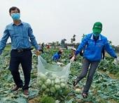 Hải Dương ưu tiên xét nghiệm COVID-19 cho nông dân, người thu mua nông sản
