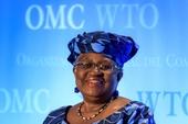 Tân Tổng Giám đốc WTO bắt đầu ngày làm việc đầu tiên