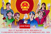 Thành lập 15 đơn vị bầu cử đại biểu HĐND TP Đà Nẵng khóa X