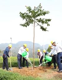 Tổng Giám đốc EVN Trần Đình Nhân trồng cây tại Nhà máy Thủy điện Tuyên Quang