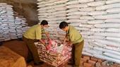 Quản lý thị trường Gia Lai tạm giữ gần 1 tấn phân bón hết hạn sử dụng