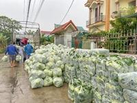 Phật tử chùa Ba Vàng giải cứu gần 300 tấn nông sản cho bà con Hải Dương