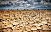 Hội thảo hướng tới Hội nghị thượng đỉnh biến đổi khí hậu lần thứ 26 COP26