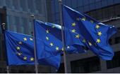 EU sẽ tổ chức hội nghị thượng đỉnh theo hình thức trực tuyến