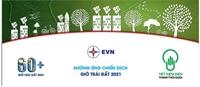 1 giờ tắt đèn hưởng ứng Giờ Trái đất 2021, Việt Nam tiết kiệm 353 000 kWh