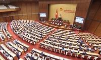 Tăng số lượng đại biểu chuyên trách để đảm bảo tính đặc thù của chính quyền đô thị