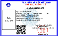 Từ ngày 1 4, thực hiện cấp thẻ BHYT theo mẫu thẻ mới