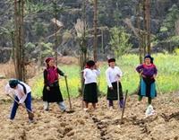 Hoàn thiện cơ chế, chính sách phát triển KTXH vùng dân tộc thiểu số và miền núi