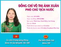 [Infographic] Chân dung tân Phó Chủ tịch nước Võ Thị Ánh Xuân