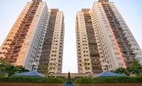Cưỡng chế bàn giao kinh phí bảo trì phần sở hữu chung nhà chung cư