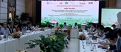 Nhiều tiềm năng để Việt Nam mở rộng thị trường xuất khẩu xoài