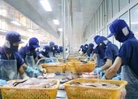 Xuất khẩu thủy sản đạt 1,69 tỷ USD trong quý I 2021