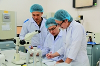 Đại học quốc gia Hồ Chí Minh Định hướng trở thành Đại học nghiên cứu