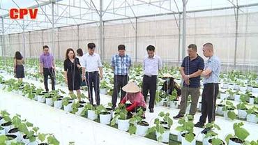 Nông nghiệp công nghệ cao Định hướng phát triển cho vùng nông thôn, miền núi