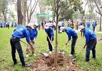 Trồng 1 tỷ cây xanh không trồng theo phong trào