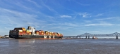 UNCTAD Thương mại toàn cầu phục hồi sau COVID-19 đạt mức cao kỷ lục