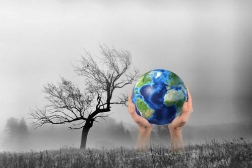 Xây dựng Nghị định quy định giảm nhẹ phát thải khí nhà kính