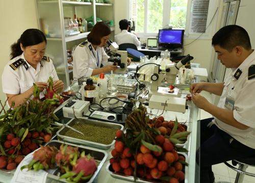 6 trường hợp được miễn phí kiểm dịch thực vật