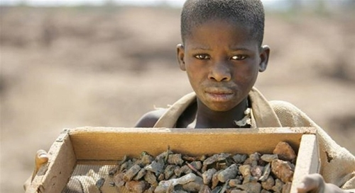 Cảnh báo tình trạng lao động trẻ em trên thế giới