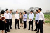 Hà Nội Còn gần 400 dự án sử dụng đất chậm triển khai, vi phạm Luật Đất đai