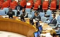 Việt Nam ủng hộ vai trò của các tổ chức khu vực với công việc của LHQ