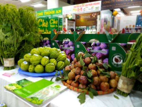 Kết nối tiêu thụ mận tam hoa và nông sản an toàn tỉnh Lào Cai