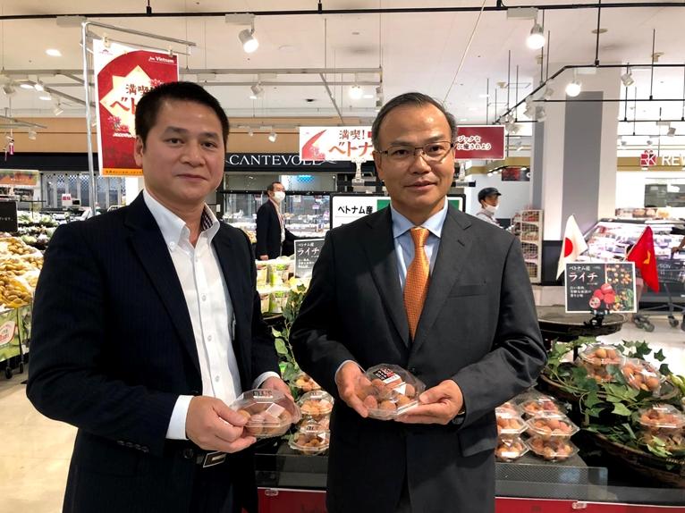 Vải thiều Việt Nam ngày càng có vị thế vững chắc tại thị trường Nhật Bản