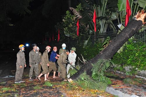 Mưa lớn gây úng ngập, đổ cây tại nhiều tuyến phố Hà Nội
