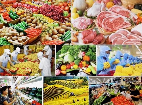 Xây dựng hệ thống lương thực, thực phẩm minh bạch, trách nhiệm, bền vững
