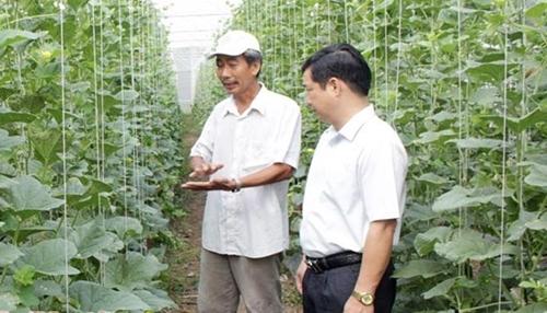 Bình Phước định hướng phát triển nông nghiệp công nghệ cao