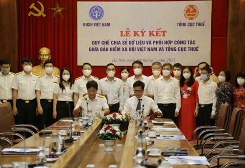 Bảo hiểm xã hội Việt Nam và Tổng cục Thuế chia sẻ dữ liệu giữa hai Ngành