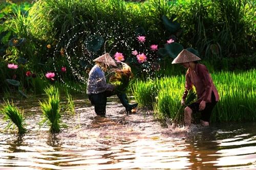 Nghệ sĩ nhiếp ảnh trẻ Hưng Yên quảng bá Hình ảnh Việt Nam ra Thế giới