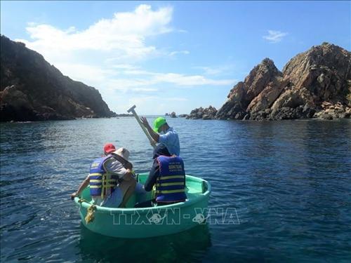 Tăng cường quản lý, bảo vệ rạn san hô ven biển Quy Nhơn