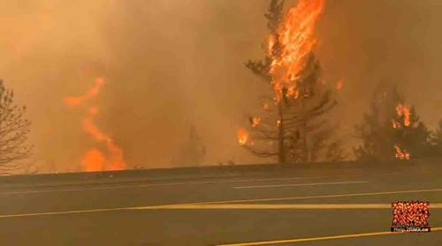Điện chia buồn về các vụ cháy rừng ở Canada