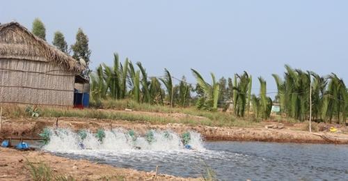 Ngành Thủy sản nỗ lực thực hiện mục tiêu, kế hoạch năm 2021