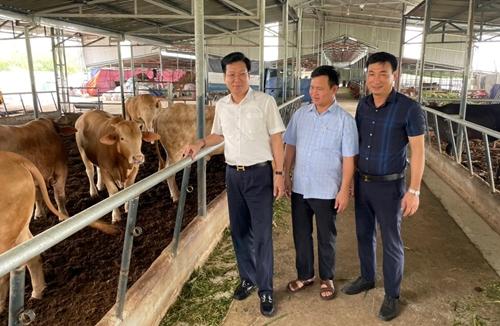Bình Lục đẩy mạnh ứng dụng công nghệ cao trong sản xuất nông nghiệp