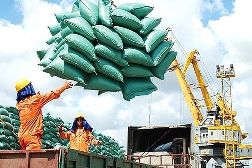 Xuất khẩu gạo giảm về khối lượng và giá trị trong 6 tháng đầu năm