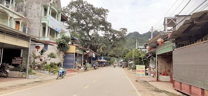 Bắc Kạn Sẽ xử lý loạt sai phạm tại Dự án đường tỉnh 254