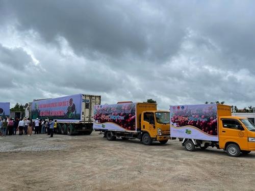 Chủ động gỡ khó cho logistic thương mại điện tử đảm bảo lưu thông hàng hoá