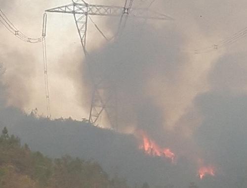 EVN yêu cầu các đơn vị đảm bảo an toàn hệ thống điện trước nguy cơ cháy rừng