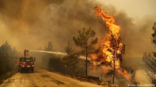 Cháy rừng tồi tệ nhất trong vòng một thập kỷ ở Thổ Nhĩ Kỳ
