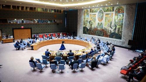 Thông qua Tuyên bố Chủ tịch về Phái bộ UNAMID