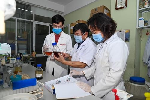 Nghiên cứu thành công tiền lâm sàng thuốc điều trị COVID-19 từ thảo dược