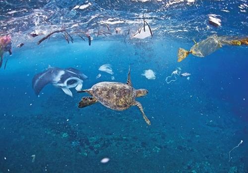 Việt Nam tham gia xây dựng Thỏa thuận toàn cầu về ô nhiễm nhựa đại dương
