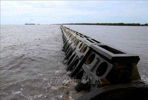 Quy định các khu vực không được lấn biển nhằm đảm bảo môi trường sinh thái